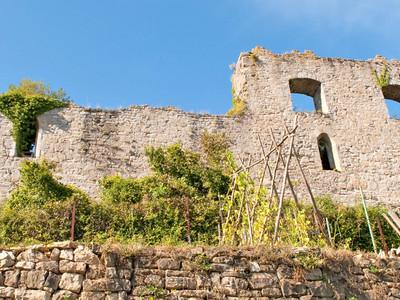Bild: Ruine der Burg der Herren von Sachsenheim (Untermberg)