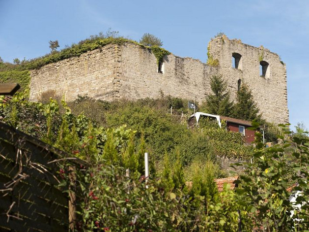 Burgruine Bild 3