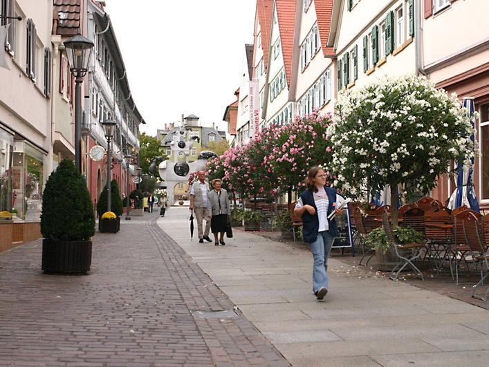 Oleander in der oberen Hauptstrasse