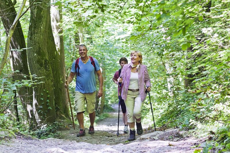 Wanderung im Rotenacker Wald. Foto: Boris Lehner